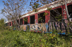 Abandoned train. Wagons with graffiti Royalty Free Stock Image