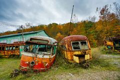 Abandoned Trolley Cars in Fall. Abandoned trolley cars painted with graffiti in field in fall with other abandoned vehicles Stock Image