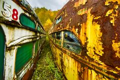 Abandoned trolley cars wide angle perspective view between two lines. Abandoned trolley cars painted with graffiti in woods    wide angle perspective view Stock Photos