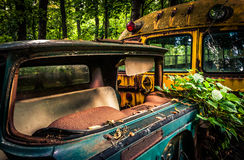Abandoned truck and school bus in a forest. Stock Image