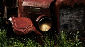 Rust in the Tall Grass Royalty Free Stock Photography