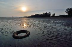 Abandoned tyre Stock Image