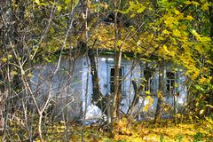 Abandoned village in Chernobyl exclusion zone with buildings taken over by vegetation Stock Photos