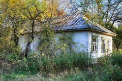 Abandoned village in Chernobyl exclusion zone with buildings taken over by vegetation Royalty Free Stock Photo