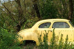 Abandoned vintage car Royalty Free Stock Photo