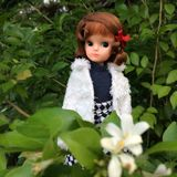 An abandoned vintage Japanese doll named Licca-chan. She is the 1st generation. The foreground is green leafs and white flowers royalty free stock image