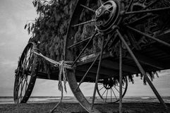 Abandoned Wagon in Lake. An old wagon once used as a hunting blind left to rust in lake saint clair Royalty Free Stock Photos