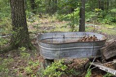 Abandoned watering tub. An old galvanized metal watering tub for livestock propped on old cut firewood is left to decay at the edge of a forest stock images