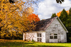 Abandoned White Shack during Autumn Season Stock Image