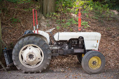 Abandoned white tractor in the forest under trees Royalty Free Stock Photography
