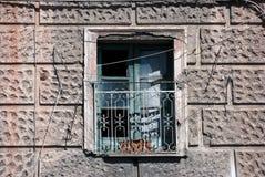 Abandoned window Royalty Free Stock Photos