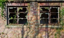Abandoned windows. Overgrown Windows of the abandoned royalty free stock photos