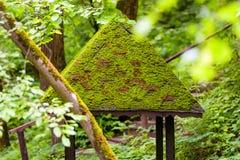 Abandoned woden summerhouse Arkivbild
