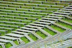 Abandoned wooden benches and bleachers in grass at old rural stadium Stock Photography