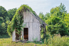 Abandoned Wooden Cabin Royalty Free Stock Image