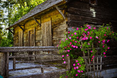 An abandoned wooden cabin inside the forest Stock Photography