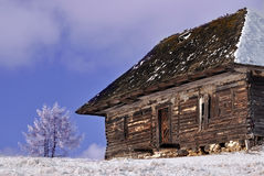 Abandoned wooden cottage in wintry view Royalty Free Stock Photo