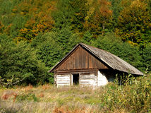 Abandoned wooden house Stock Photo