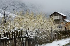 Abandoned wooden house with old broken fence in winter, Armenia Stock Image