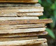 Abandoned wooden plank Royalty Free Stock Images