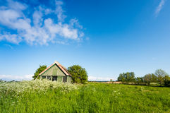 Abandoned wooden shed in a colorful spring landscape Royalty Free Stock Photography