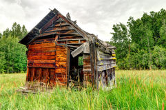 Abandoned wooden shed in a grass field Royalty Free Stock Photo