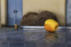 Abandoned yellow apple on the street. Abandoned yellow apple over metal surface on the street in Spain Royalty Free Stock Images