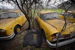 Abandoned Yellow Cabs, Lockhart, Texas Stock Photo