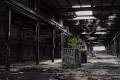 Abandonné Photos stock