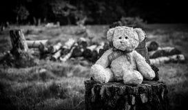 Abandonné dans la région boisée photo stock