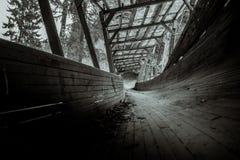 Abandonné luge les serpents de voie il voie du ` s par la forêt Photographie stock libre de droits