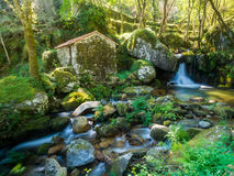 Abandonné peu de maison ou moulin dans la forêt dans Vale faites Douro, P Photo libre de droits