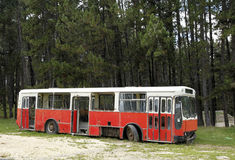 Abandonned bus in the outdoor. Abandonned red bus in the outdoor before the trees royalty free stock image