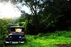 Abandonned in the woods. An old abandonned Jeep while on a morning trek through the woods of western Maharashtra royalty free stock photography