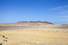 Abandonnez à côté de l'océan en parc national Paracas dans AIC, Pérou Photographie stock