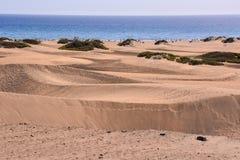 Abandonnez avec des dunes de sable dans mamie Canaria Espagne Images libres de droits