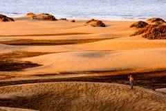 Abandonnez avec des dunes de sable dans mamie Canaria Espagne Photographie stock libre de droits
