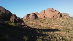 Abandonnez avec les roches rouges et les usines de floraison de Tridentata de Larrea à Phoenix, Arizona au printemps Image stock