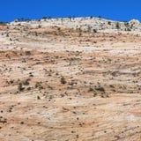 Abandonnez en stationnement national de Zion, Utah. Photo libre de droits