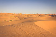 Abandonnez la dune à l'erg Chebbi près de Merzouga au Maroc Photo stock