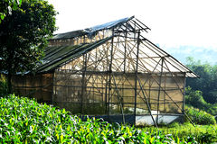 Abandonnez la maison verte faite à partir du bambou et du plastique Image libre de droits