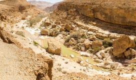 Abandonnez la vue profonde de paysage de falaises de canyon de mine de lac de ressort Photographie stock libre de droits
