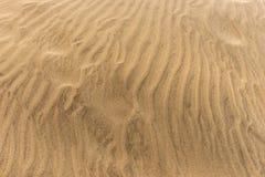 Abandonnez le fond de texture de sable de dunes dans mamie Canaria de Maspalomas Images libres de droits