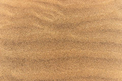Abandonnez le fond de texture de sable de dunes dans mamie Canaria de Maspalomas Photo stock