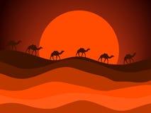 Abandonnez le paysage avec une caravane des chameaux à l'arrière-plan du soleil Vecteur illustration stock