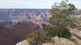abandonnez le paysage dans les montagnes de Grand Canyon dans le Colorado Images libres de droits