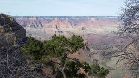 abandonnez le paysage dans les montagnes de Grand Canyon dans la région sauvage du Colorado Photos stock