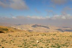 Abandonnez le paysage de montagne (vue aérienne), Jordanie, Moyen-Orient Photo libre de droits