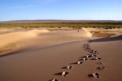 Abandonnez le paysage du désert de gobi avec l'empreinte de pas dans le sable, Mongolie Photos libres de droits