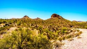 Abandonnez le paysage et les montagnes rocailleuses dans la réserve forestière de Tonto en Arizona, Etats-Unis Photographie stock libre de droits